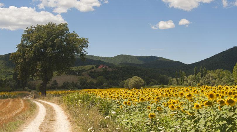 Viaggi in Italia on the Road; Bedandbrekfast.eu